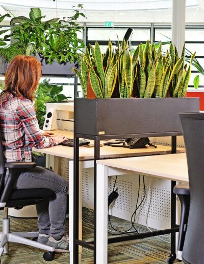 1,5meter afscheiding plantenbakken werkplek.jpg