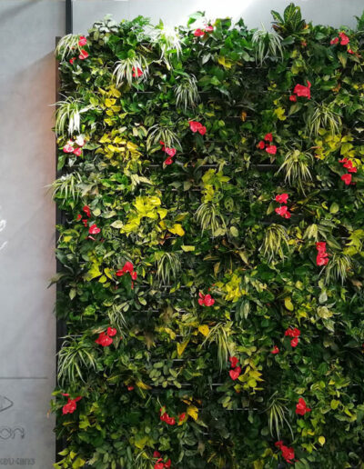 Groene wand met groen rode beplanting