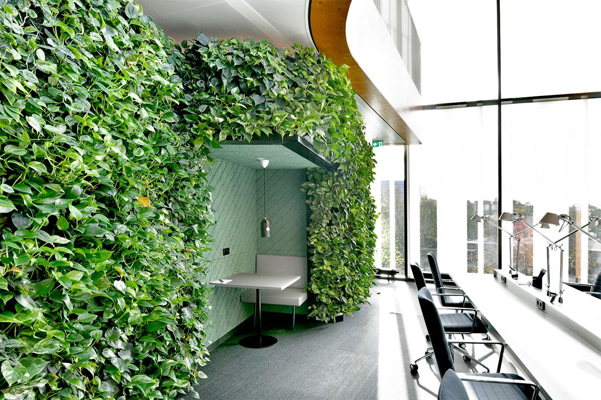 Interieurbeplanting groene wanden uitgelicht
