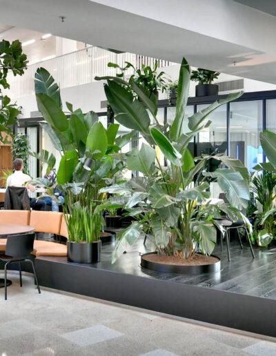 Jungle atrium met mixbeplanting