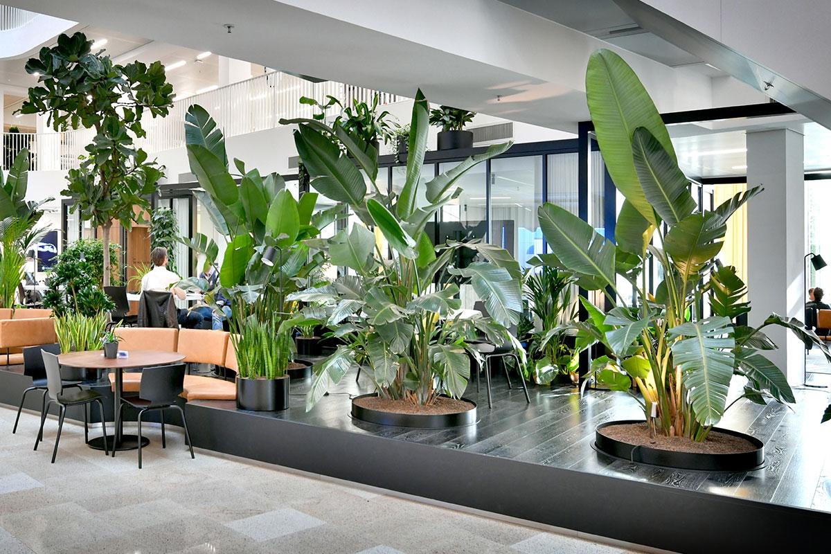 Jungle-atrium-met-mixbeplanting