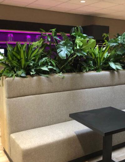 Plantenbak met mixbeplanting achter bank