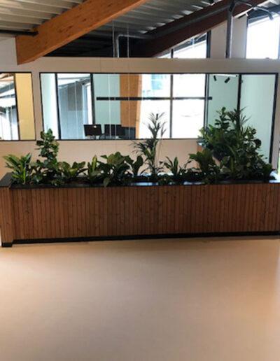Rechthoekige houten paneelbak met mixbeplanting