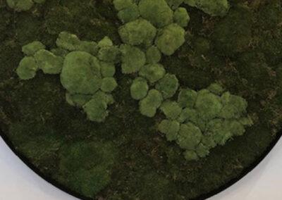 Rond mosschilderij ingezoomd