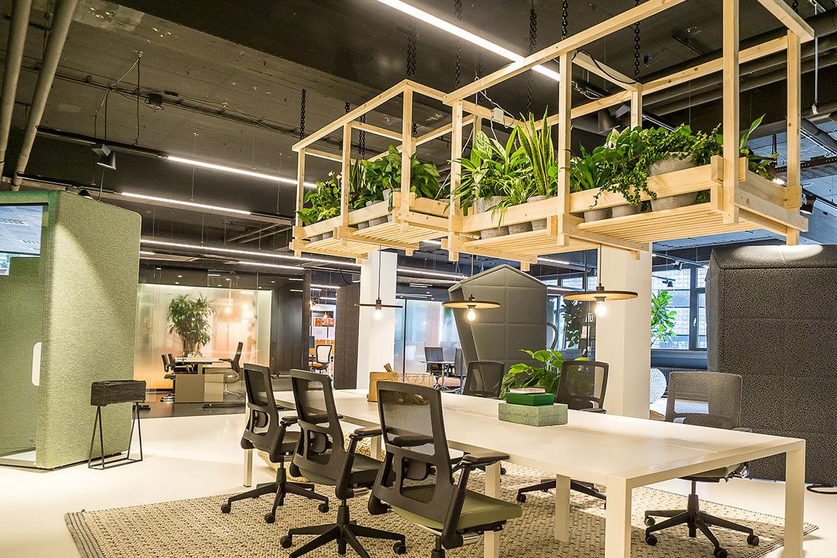 kantoorplanten hanging baskets