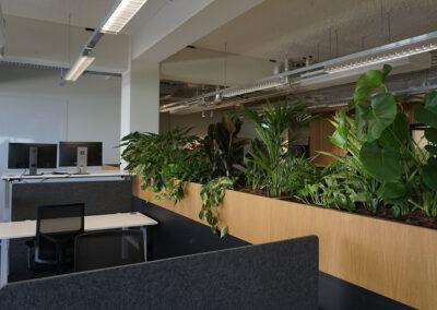 werkplek afscheiding plantenbakken