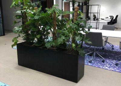 Prestige zwart kunststof met Monstera beplanting