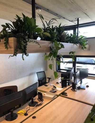 Houten maatwerkbak incl. verlichting en mixbeplanting hangend boven bureau