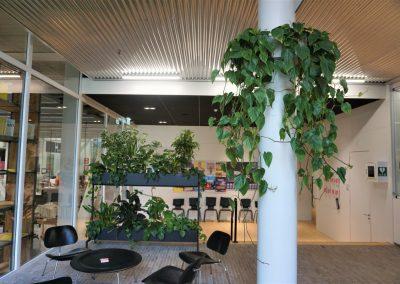 Maatwerk pilaarhanger met Philondendron Scandens en Mynthe met mixbeplanting